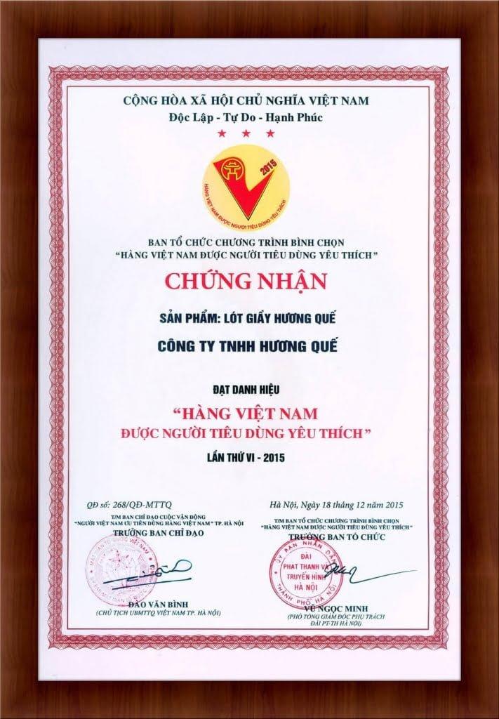 chung-nhan-hang-viet-nam-duoc-nguoi-tieu-dung-yeu-thich-2015