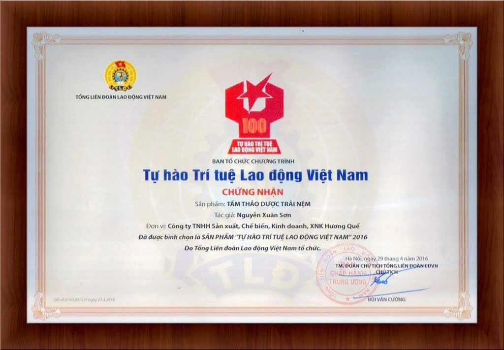 tu-hao-tri-tue-lao-dong-viet-nam-2016